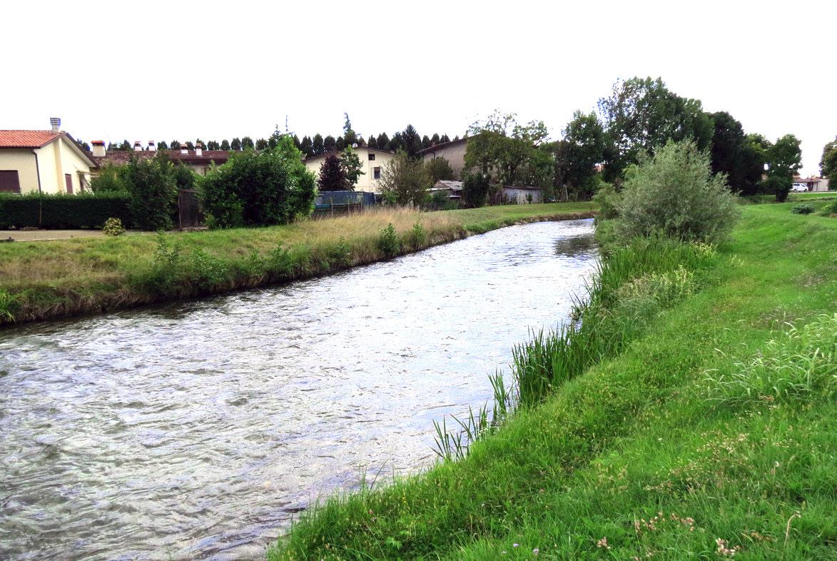 freshwater fishing around Vittorio Veneto