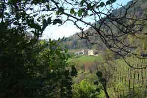 Trekking starting from Vittorio Veneto
